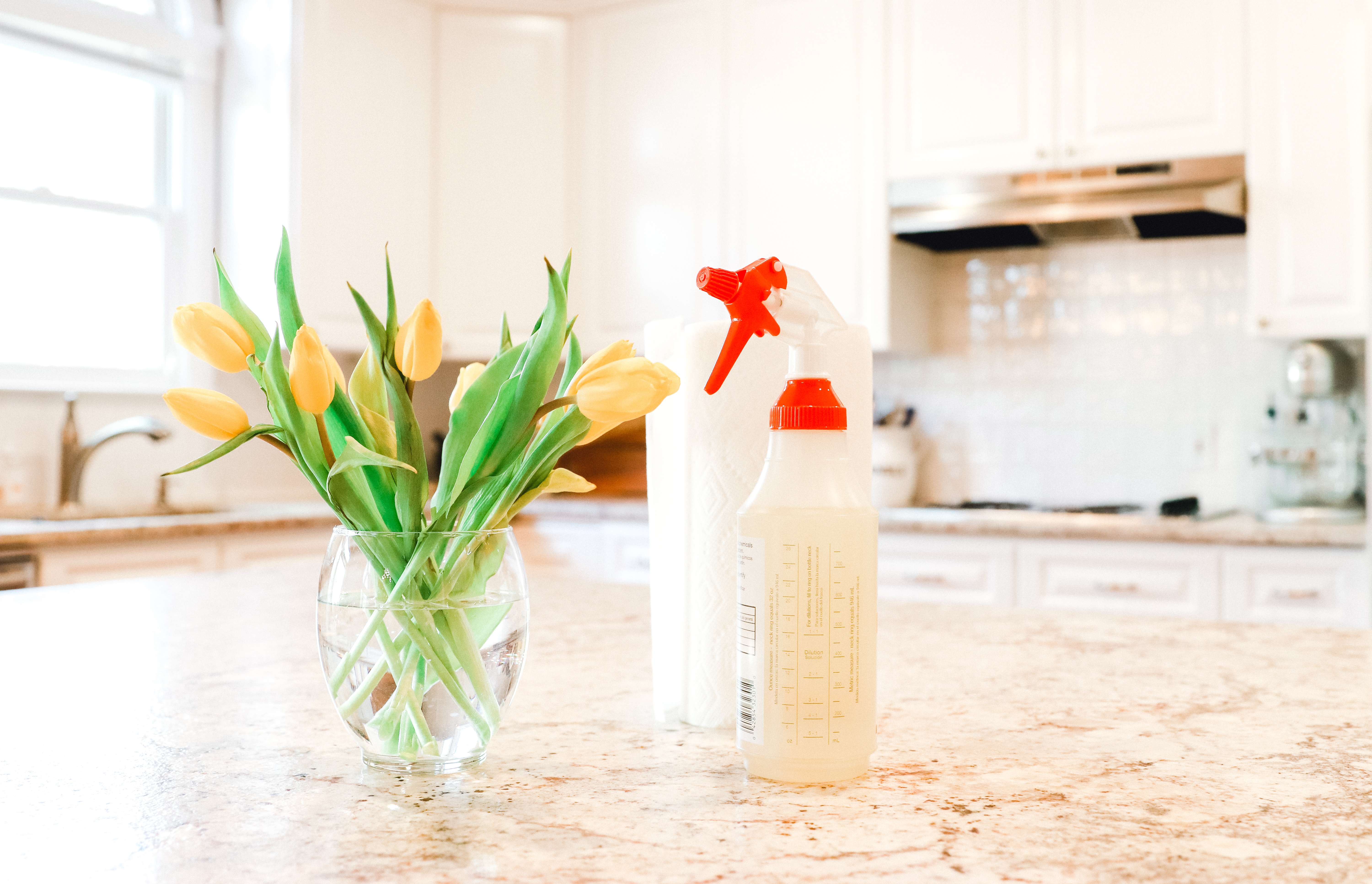 Spring Cleaning with HLN Clean Sweep - P1 How to Declutter Your ...